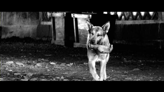 'Yojimbo' de Akira Kurosawa contiene momentos visuales que sirven para mantener la tensión y retardar el clímax narrativo.
